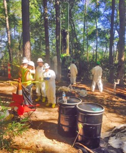 contractors examine samples of creosote